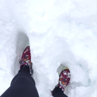 snow running shoe